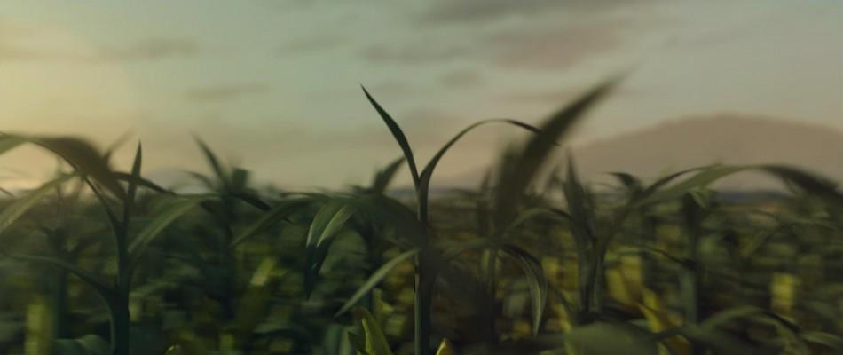 Kellogg's2_Crop